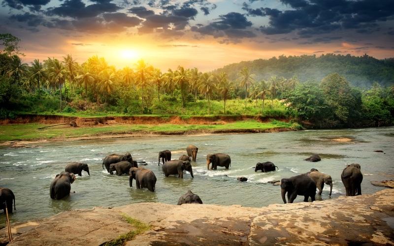 Sri Lanka-MustSees
