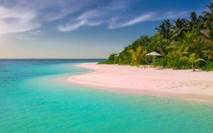 Quiz: Perfekter Strand