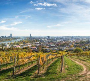 Wien Herbst