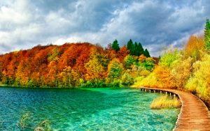 Herbst-Roadtrips